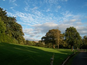 Večerní počasí ideální k procházce parkem